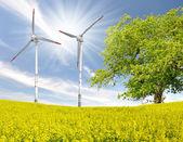 Rapeseed field with wind turbine — Stock fotografie