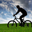 Mountain biker silhouette — Stock Photo #9291542