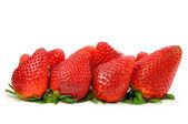 Strawberry isolated — Stockfoto