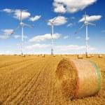 Straw bales on farmland with wind turbine — Stock Photo #9577284