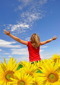The girl in a sunflower field — Stock Photo
