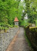 Path in garden — Stock Photo