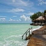 Beatiful bungalo and bridge in caribian sea — Stock Photo #7980239