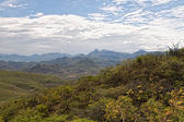 Mexican mountains of Oxaka state in the summer — Stock Photo