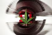 List of marijuana lying on a metal object — Stock Photo