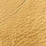 Elegant brown leather texture — Stock Photo