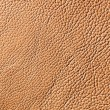 Elegant brown leather texture — Photo