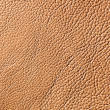 Elegant brown leather texture — Stock Photo #10091769