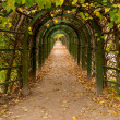 Walking avenue with wooden arches — Stock Photo