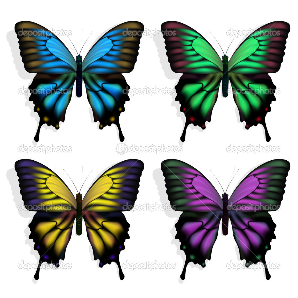 coloridas mariposas vector de stock neyro2008 9706522
