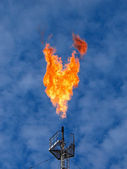 Burning oil gas flares — Stock Photo