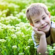 Happy kid in the green grass — Stock Photo #10522596
