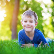 Funny little boy laying on the grass — Stock Photo #10589070