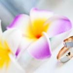 Two wedding rings — Stock Photo