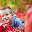 Boy in rad leaves — Stock Photo #8110186