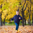 Boy in rad leaves — Stock Photo #8163430