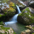 Forest waterfall — Stock Photo #8678293