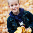 Boy in the leaves — Stock Photo