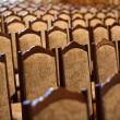 Conference hall, chairs - Stock Photo