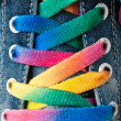 Bright colorful shoelace — Stock Photo