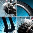 Stock Photo: Part of bike. wheel, tire, chain, sprocket