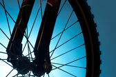 Bicycle tire and spoke wheel — Stock Photo
