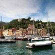Portofino, Italian Riviera, Liguria, Italy — Stock Photo #8072267