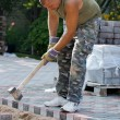 Worker,brick paver — Stock Photo
