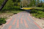 Zpevněné chodník v městském parku — Stock fotografie
