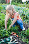 A young girl working on the garden — Stock Photo