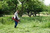 Lawnmower — Stock Photo