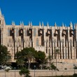 Royalty-Free Stock Photo: Cathedral of Palma de Majorca