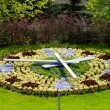 Flower clock — Stock Photo #9338161