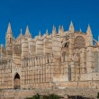 La Seu Cathedral of Palma. — Stock Photo