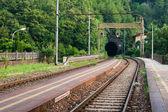 Tren tüneli — Stok fotoğraf