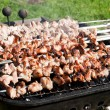 Grill with meat — Stock Photo