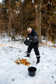 Animal feeding in winter forest — Stock Photo