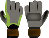 Sports gloves — Stock Vector