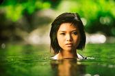 Tropical beauty — Stock Photo