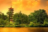 Singapur pagoda — Stock fotografie