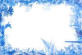 Winter border — Stock Photo