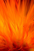 Flower flame abstract — Stock Photo
