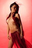 Garota do harém — Fotografia Stock
