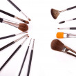 Professional make up and powder brushes — Stock Photo