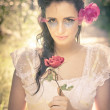 Stock Photo: Vintage Red Rose