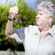 Grandmother In Her Garden - Stock Photo
