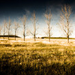 Atmospheric Vibrant And Dark Farming Landscape - Stock Photo