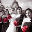 Lineup Of Bride And Bridesmaides - Stock Photo