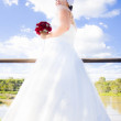 Stock Photo: Bride In White Wedding Dress