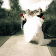 Crazy Wedding Moment — Stock Photo